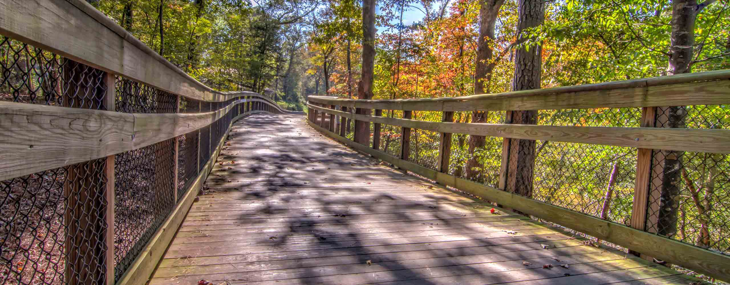 Neuse River Greenway 7
